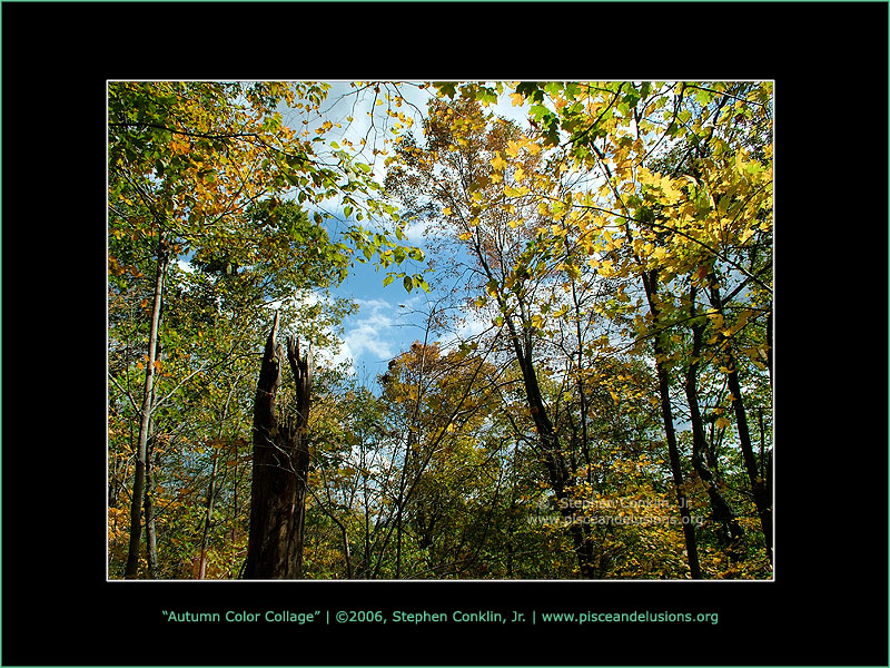 Autumn Color Collage, by Stephen Conklin, Jr - www.pisceandelusions.org