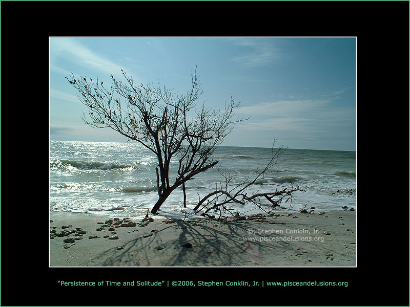 The Persistence of Time and Solitude, by Stephen Conklin, Jr. - www.pisceandelusions.org