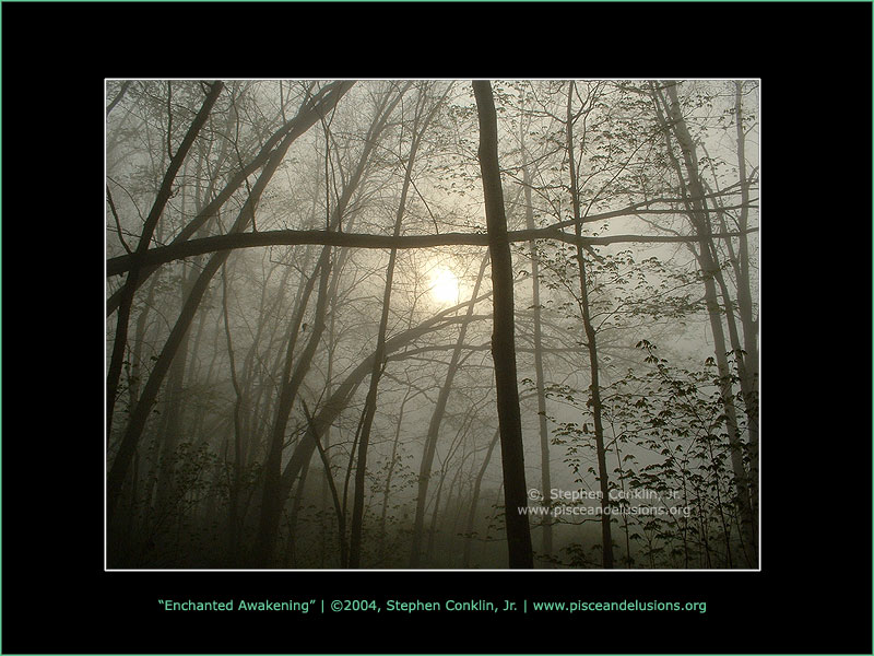 Enchanted Awakening, by Stephen Conklin, Jr. - www.pisceandelusions.org