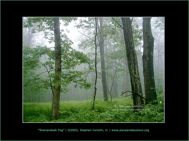 Shenandoah Fog, by Stephen Conklin, Jr., 2003, www.pisceandelusions.org