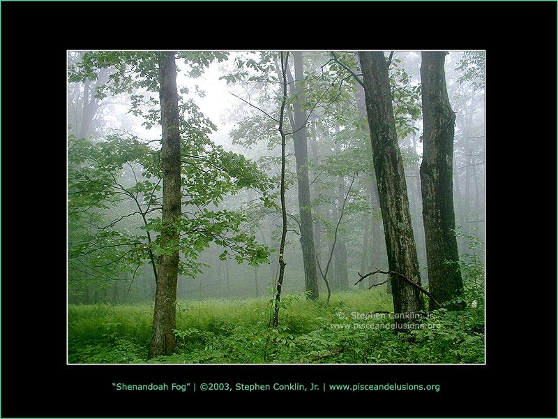 Shenandoah Fog, by Stephen Conklin, Jr. - www.pisceandelusions.org