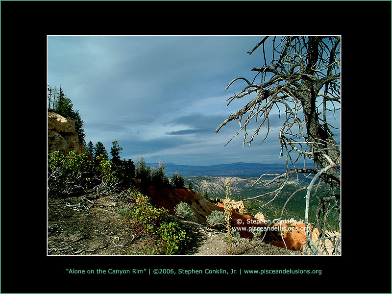 Alone on the Canyon Rim at Bryce Canyon, by Stephen Conklin, Jr. - www.pisceandelusions.org