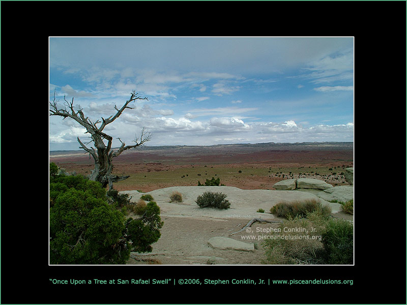 Once Upon a Tree at San Rafael Swell, by Stephen Conklin, Jr. - www.pisceandelusions.org