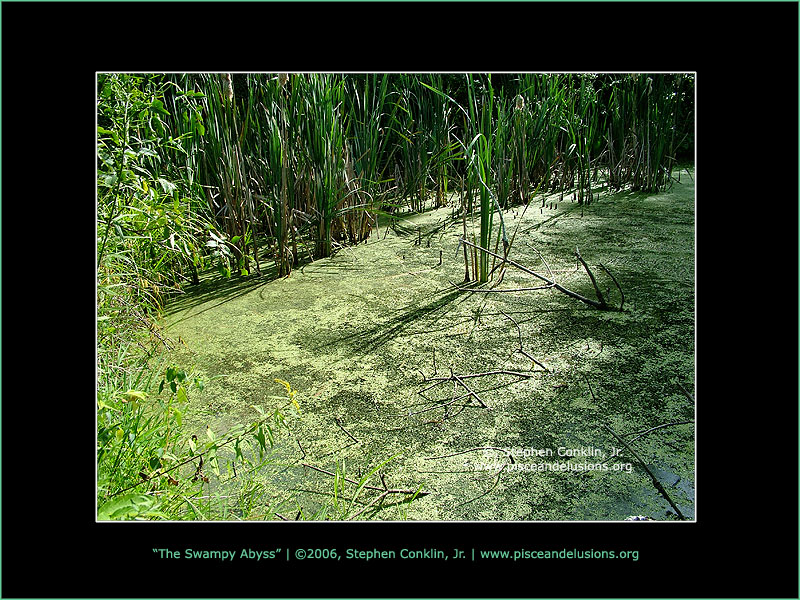 The Swampy Abyss, by Stephen Conklin, Jr. - www.pisceandelusions.org